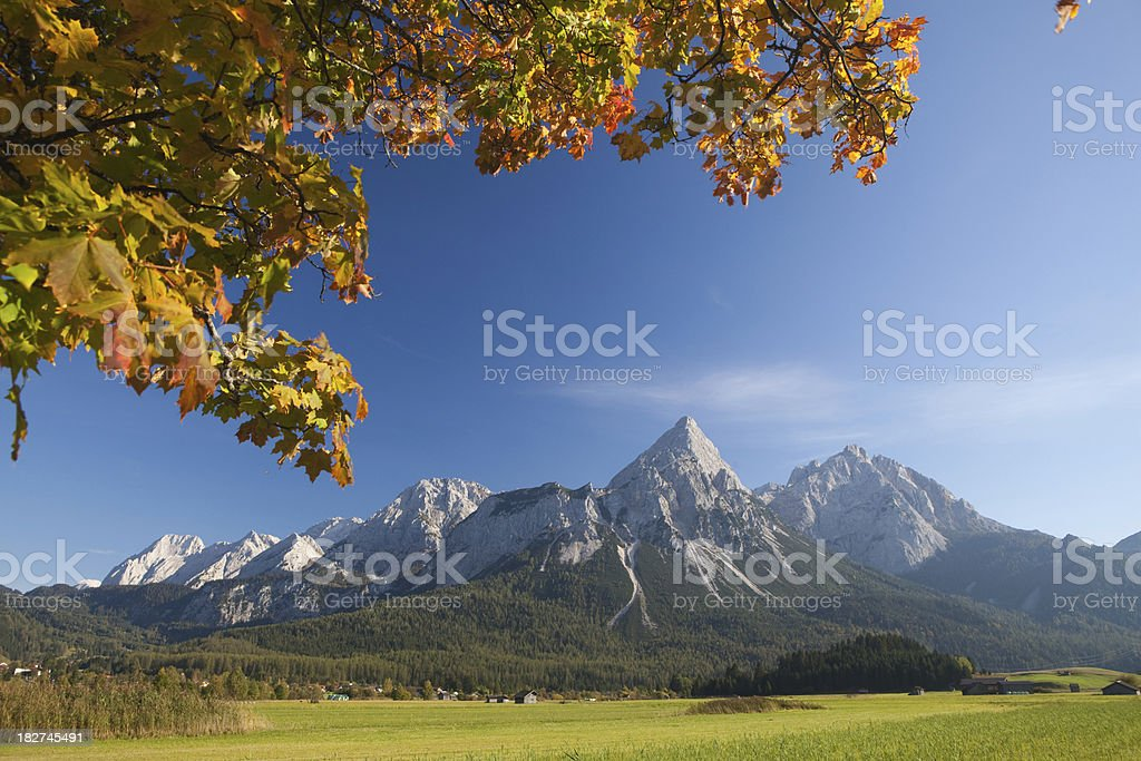 summer meadow near ehrwald royalty-free stock photo