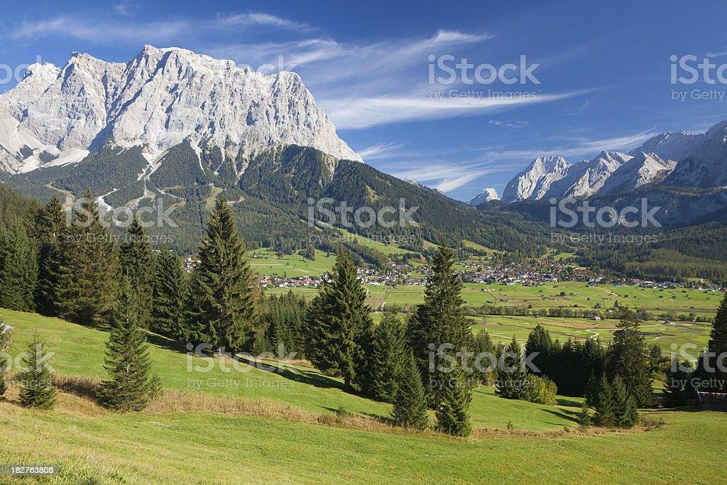 summer meadow near lermoos stock photo