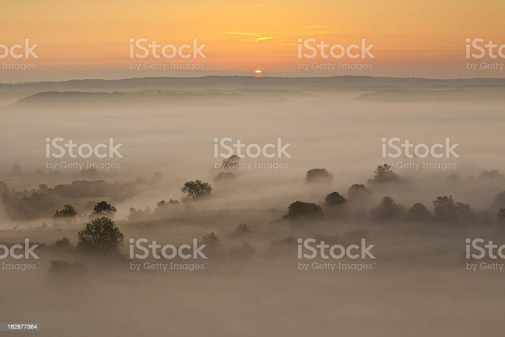 Summer Mist stock photo