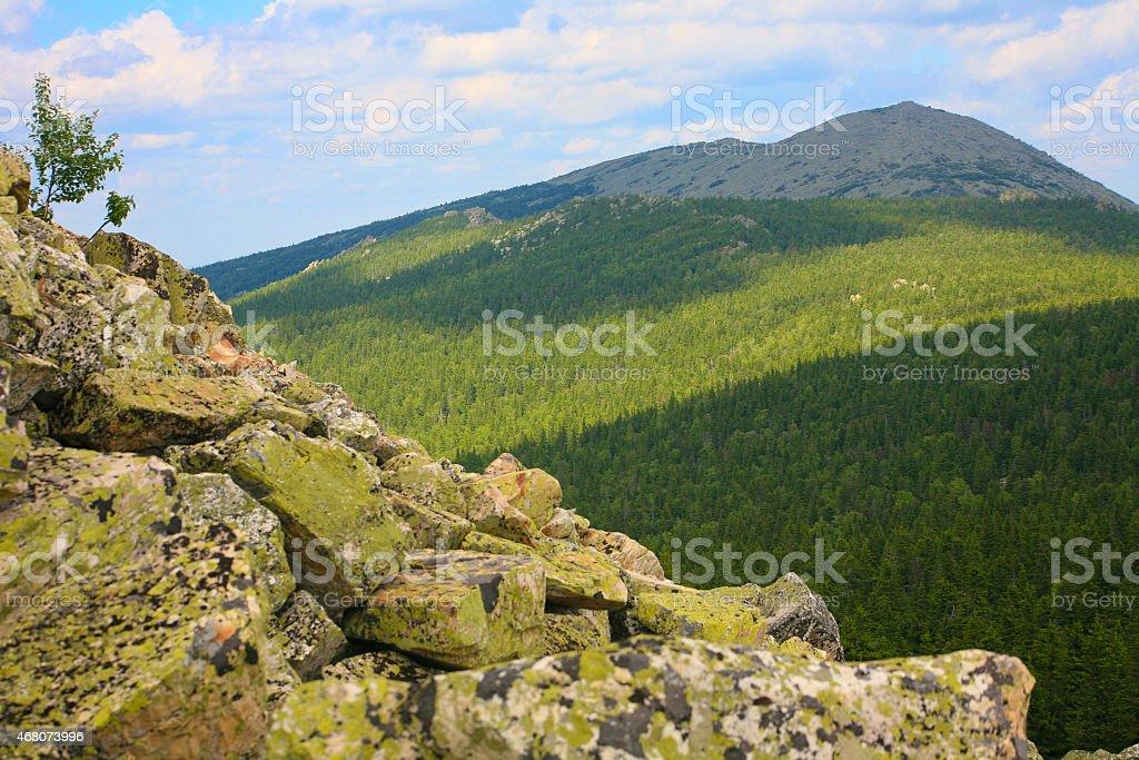 summer mountain landscape stock photo