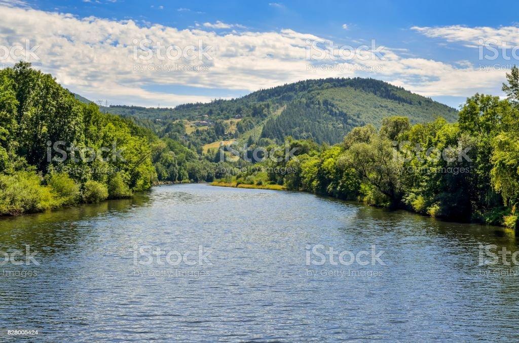 Summer mountain landscape. stock photo
