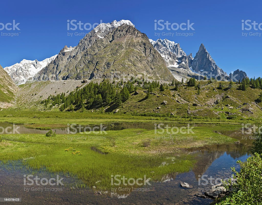 Summer mountain meadow reflected Alpine peaks pinnacles royalty-free stock photo