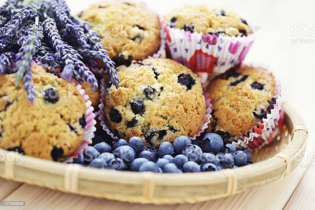 summer muffins royalty-free stock photo
