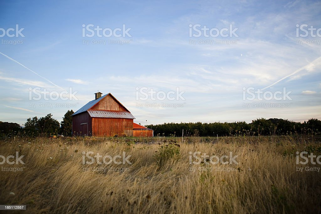 Summer Night Barn 2 stock photo