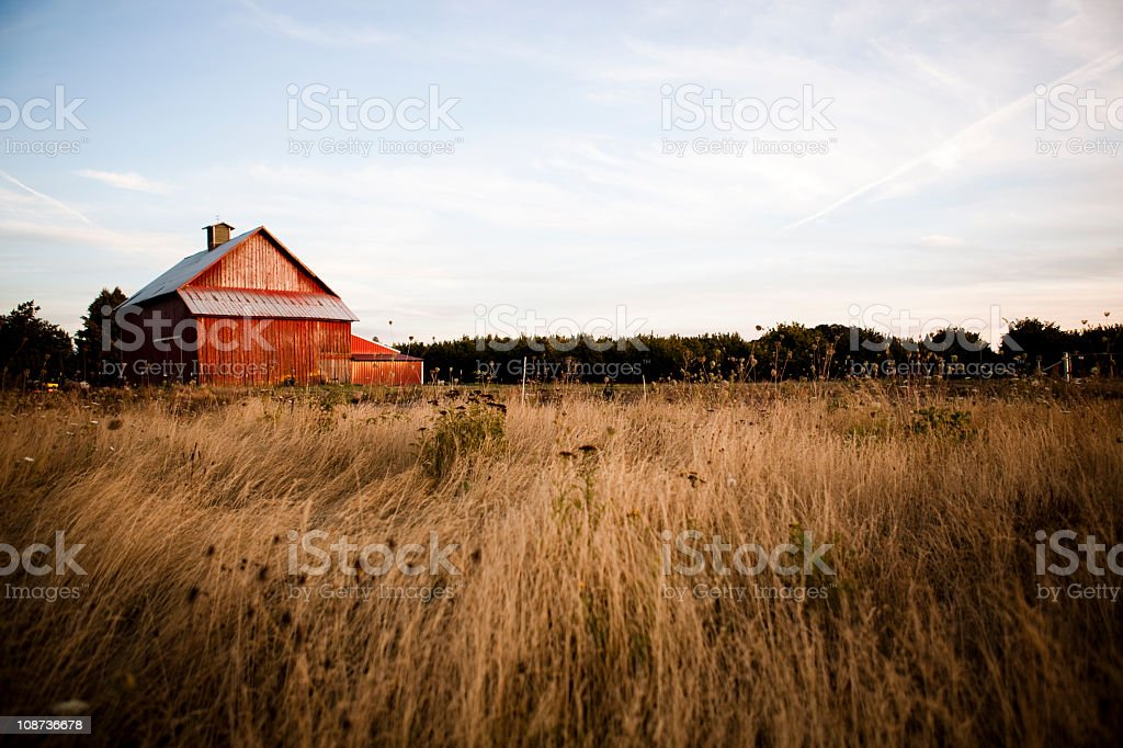 Summer night barn stock photo
