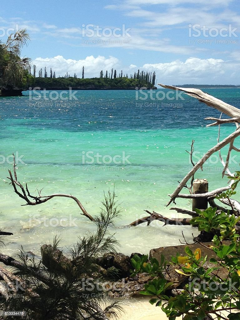 Summer on beach at Isle of Pines in New Caledonia stock photo