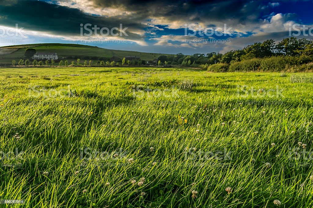 Summer on Countryside Uphill View stock photo