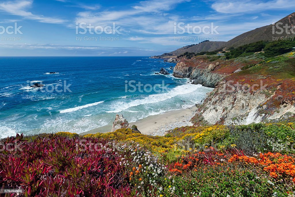 Summer on the coast of California stock photo