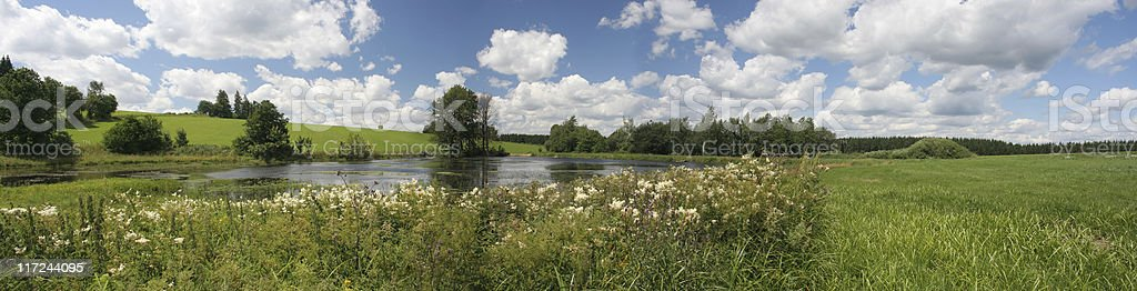 Summer panorama royalty-free stock photo