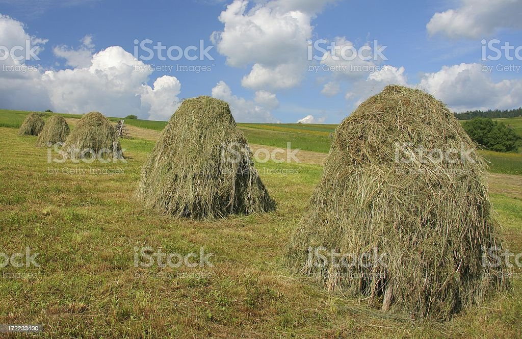 Summer panorama with Traditional way of Haystack royalty-free stock photo
