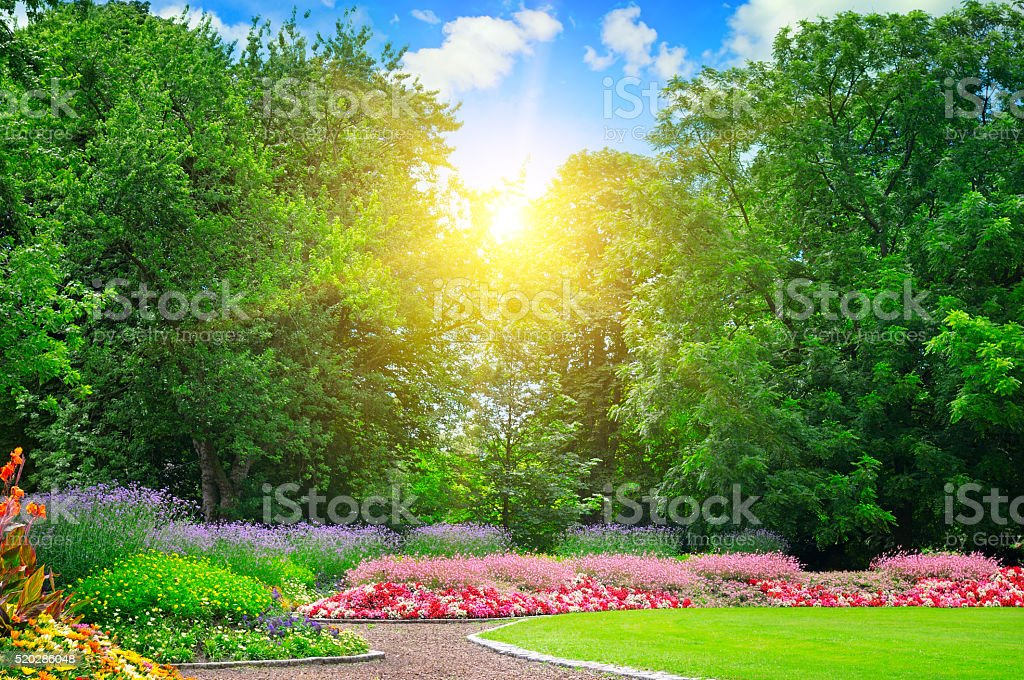 summer park with flowerbeds stock photo