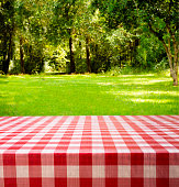 Summer picnic in backyard, park area. Trees, woods, table.