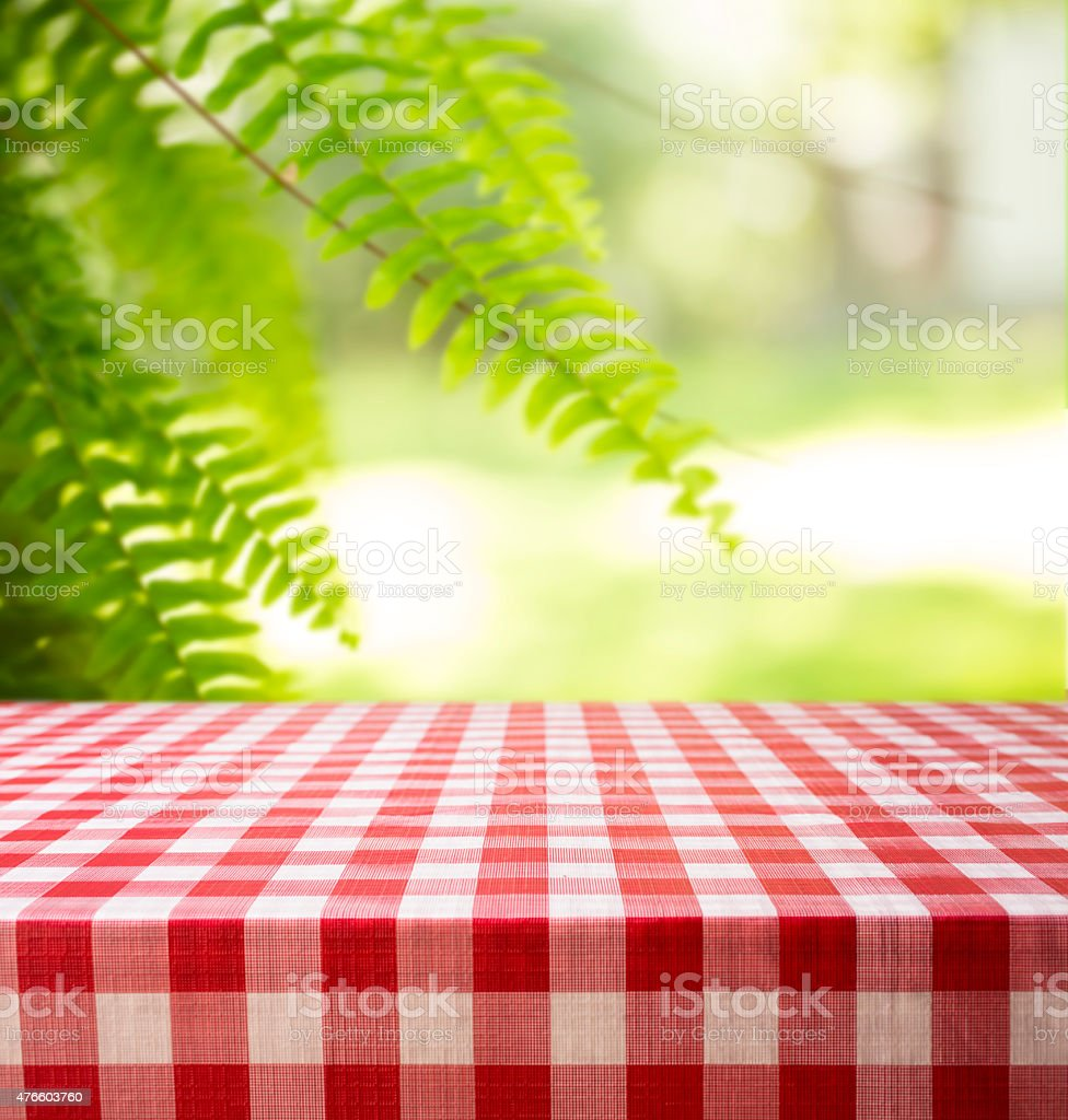 Summer picnic in park area. Fern, checked tablecloth, table. stock photo