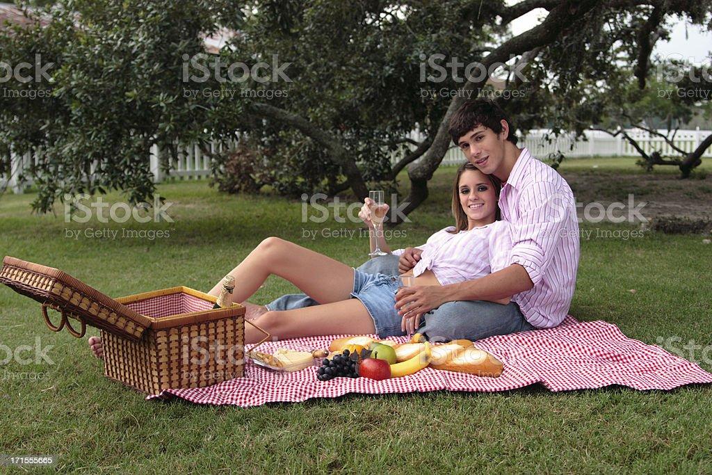 Summer picnic. royalty-free stock photo