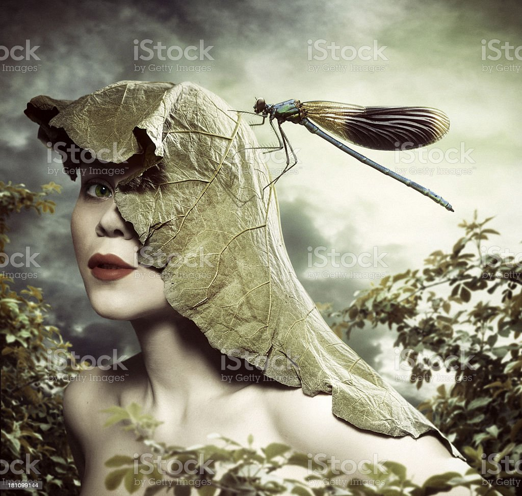 Summer portrait with Dragonfly stock photo