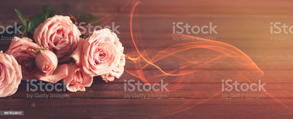 Summer recharge roses stock photo