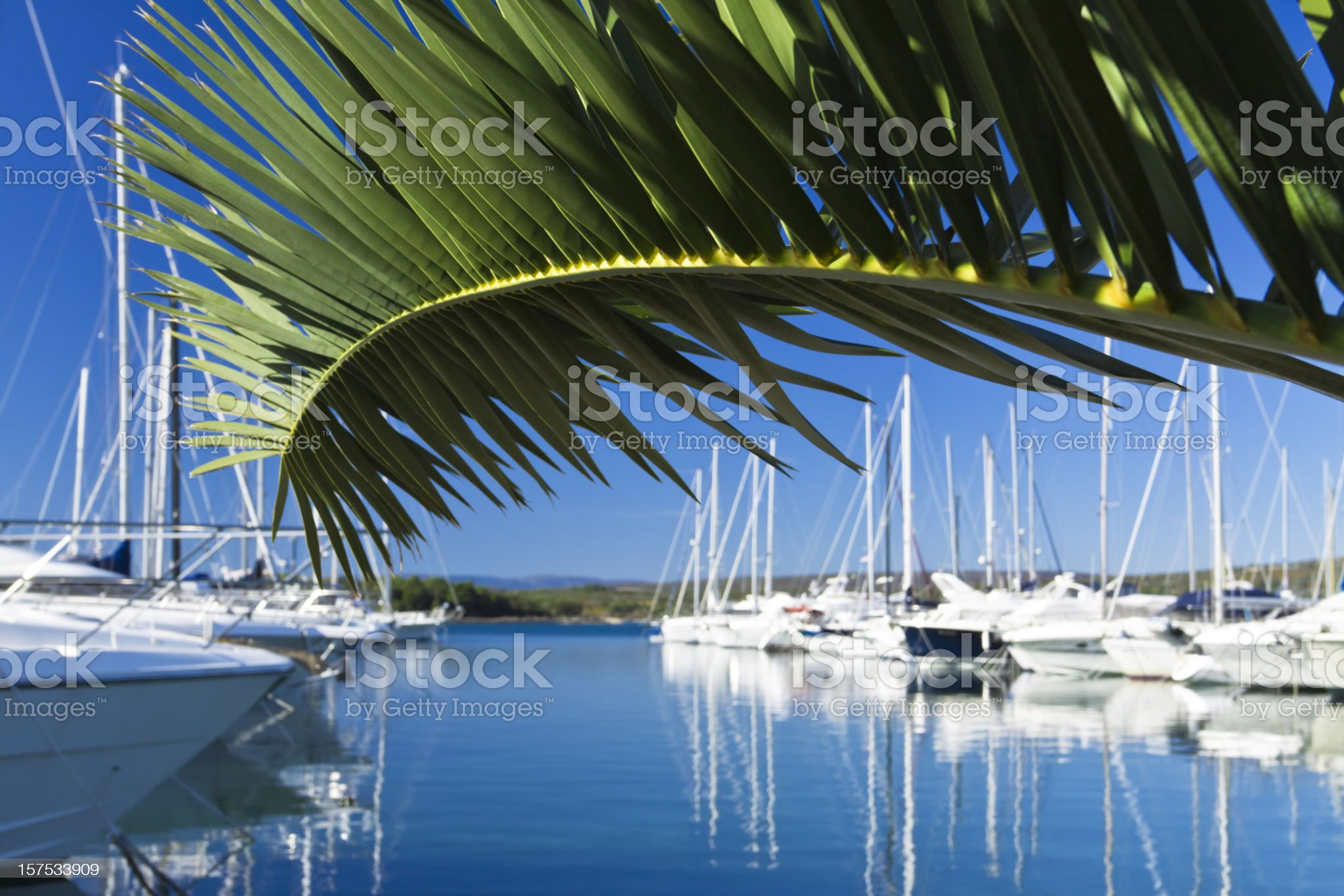 summer reflections royalty-free stock photo