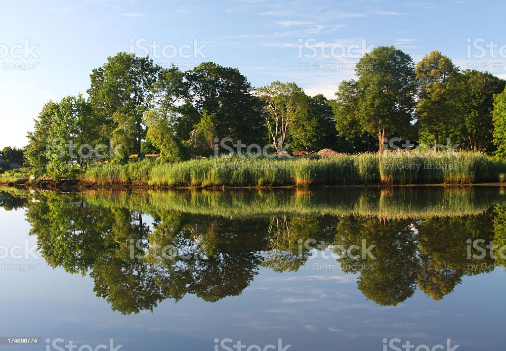 Summer Reflections stock photo