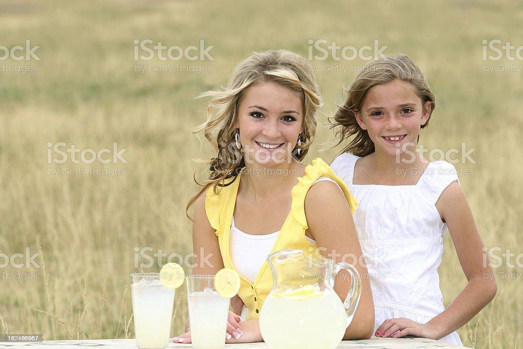 Summer Refreshments royalty-free stock photo