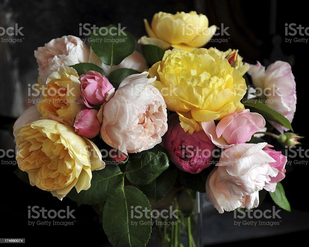Summer roses royalty-free stock photo