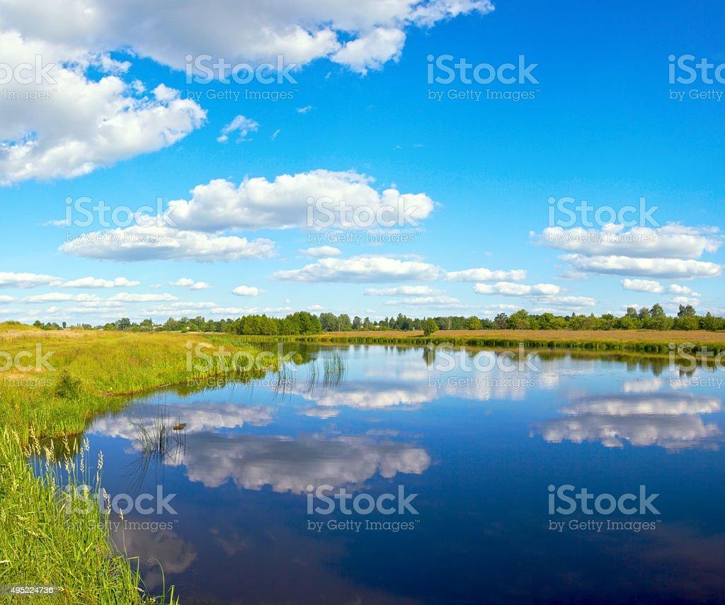 Summer rushy lake stock photo