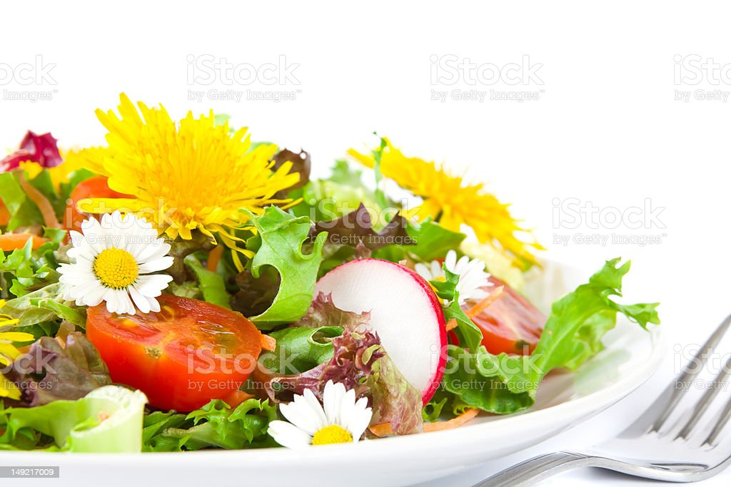 Summer salad stock photo
