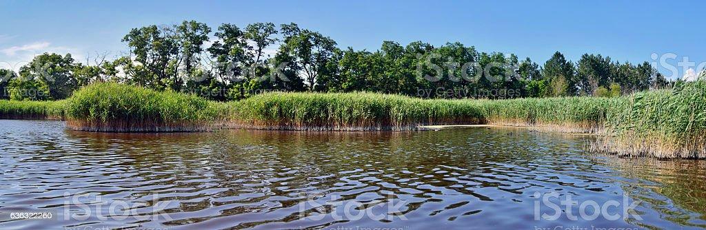 summer salt lake stock photo