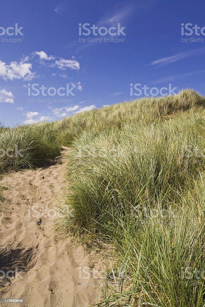 Summer sand dunes stock photo