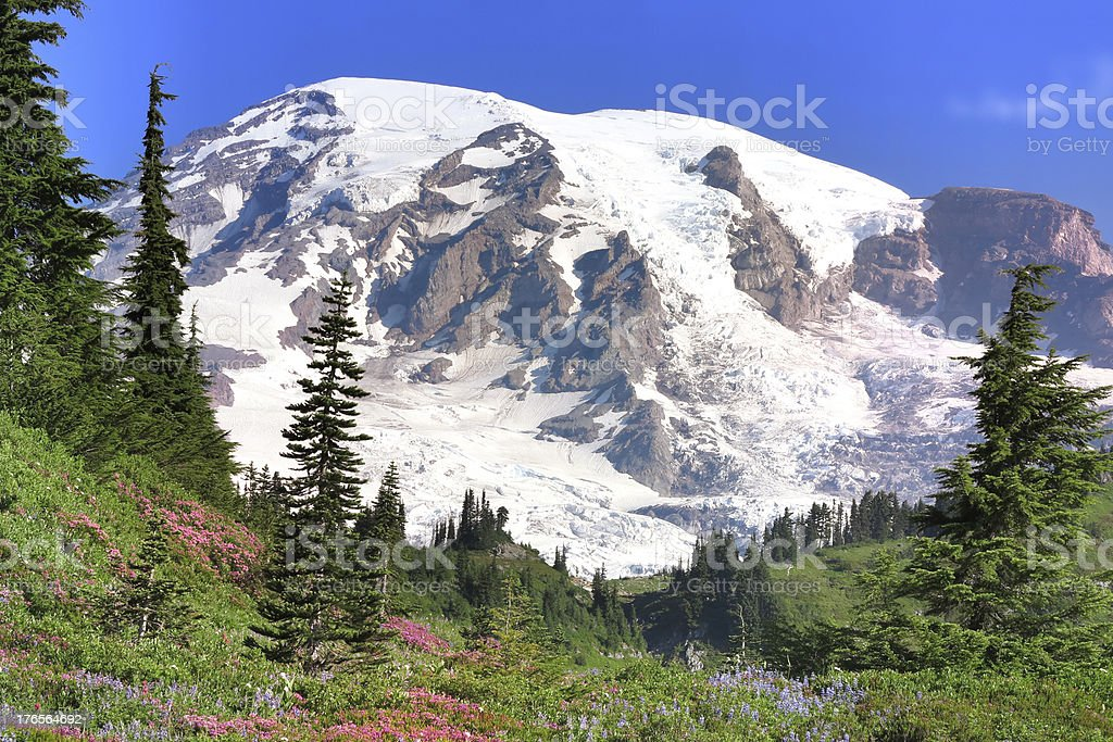 Summer season of Mount Rainier close up royalty-free stock photo