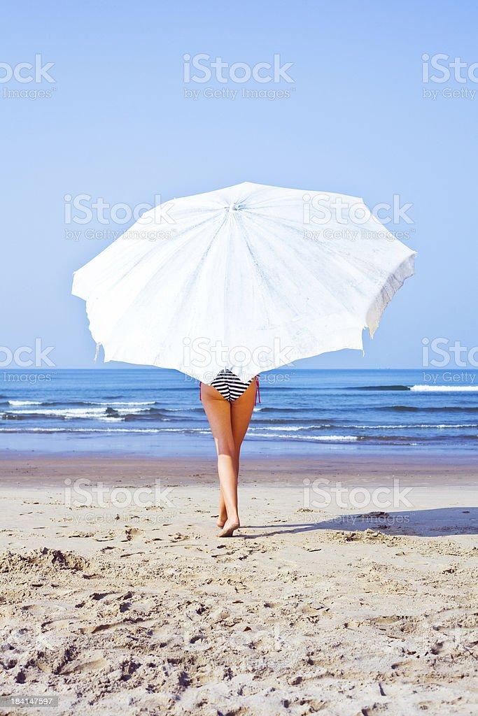 Summer season royalty-free stock photo