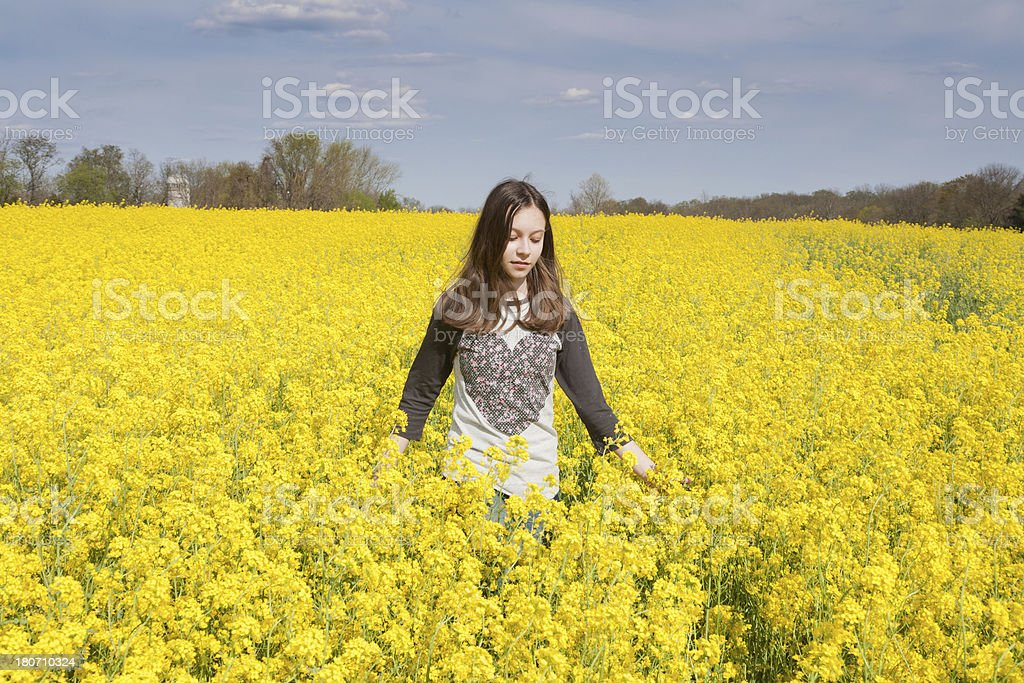 Summer Solitute royalty-free stock photo