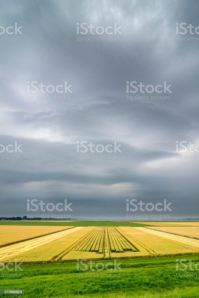 Summer Storm over farmland fields stock photo