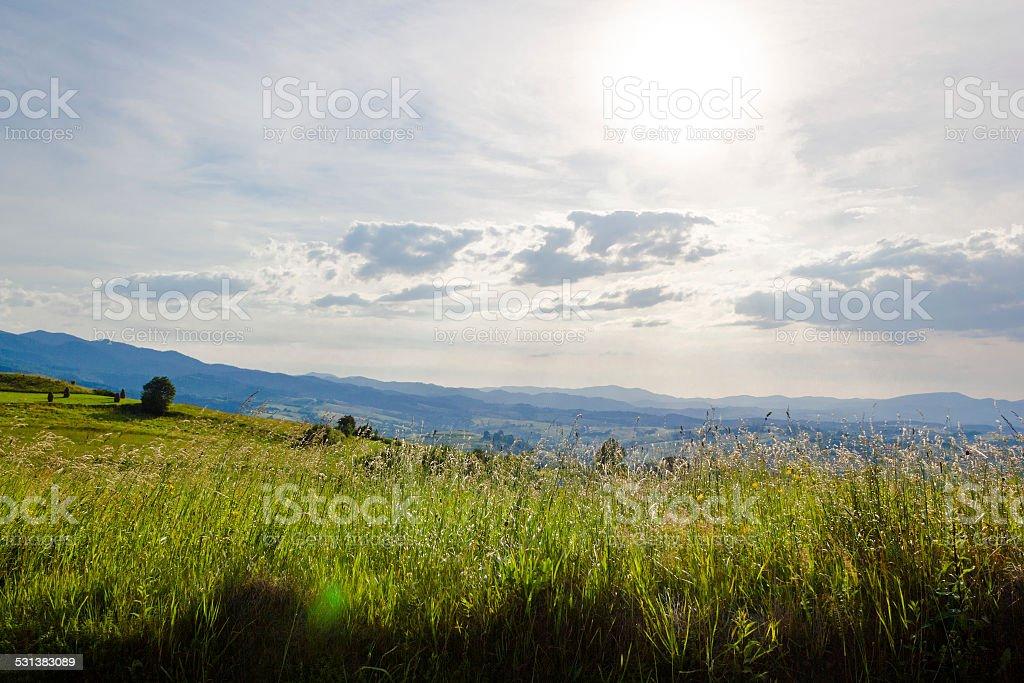 Summer sun in mountains. Beskids, Poland. stock photo