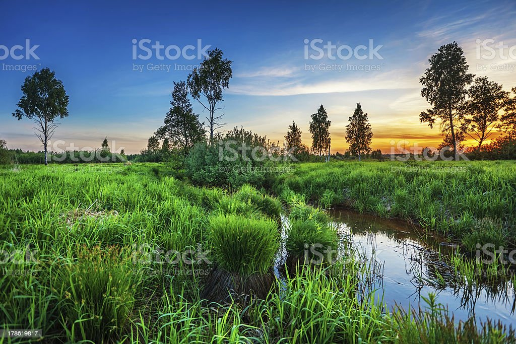 Summer sunset around field and river royalty-free stock photo