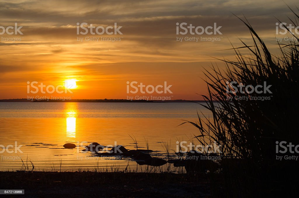 Summer sunset by a calm coast stock photo