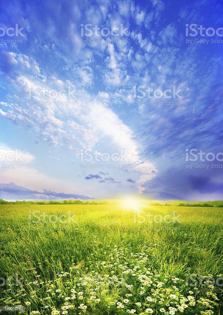 Summer sunset with clouds and field stock photo