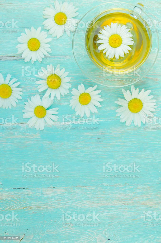 Summer tea with chamomile stock photo