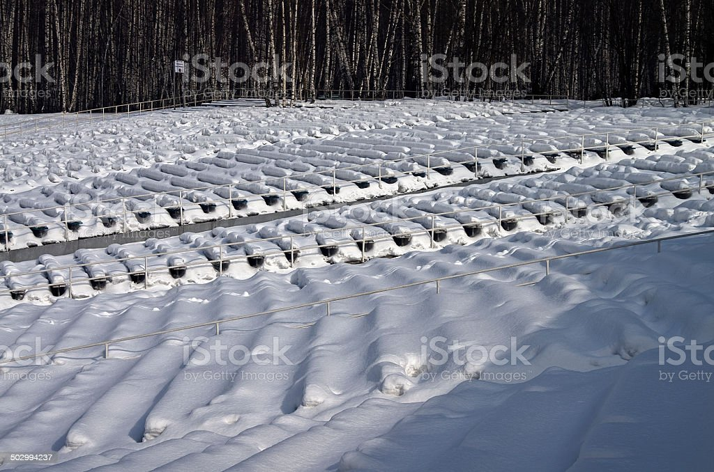 Summer theater in the winter. royalty-free stock photo