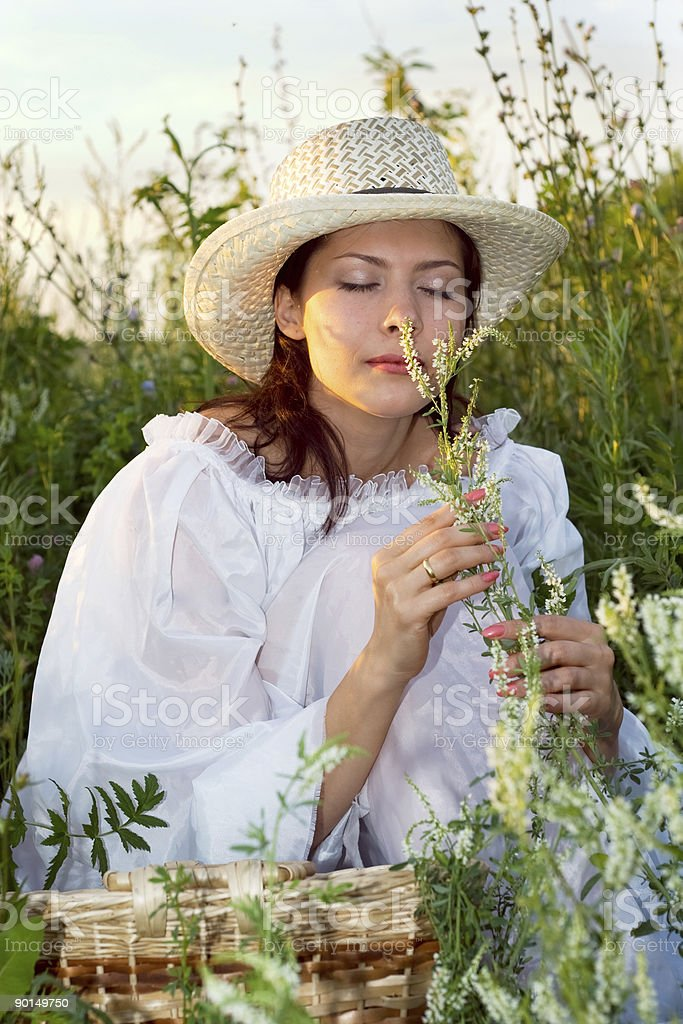 summer time royalty-free stock photo