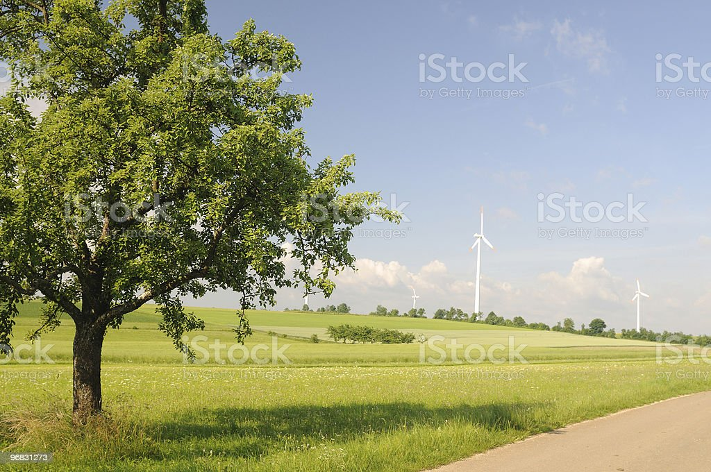 Summer Tree and Windpark stock photo
