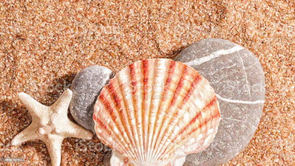 Summer trip still life over sand. Shellfish and starfish stock photo
