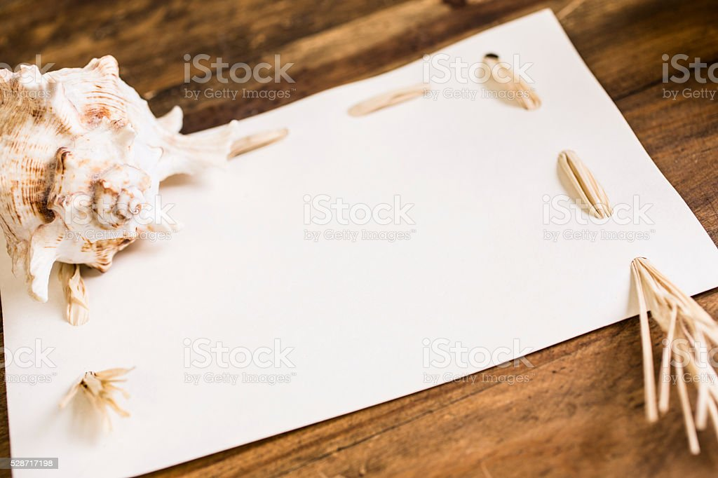 Summer vacation.  Blank, white notecard with seashells. stock photo