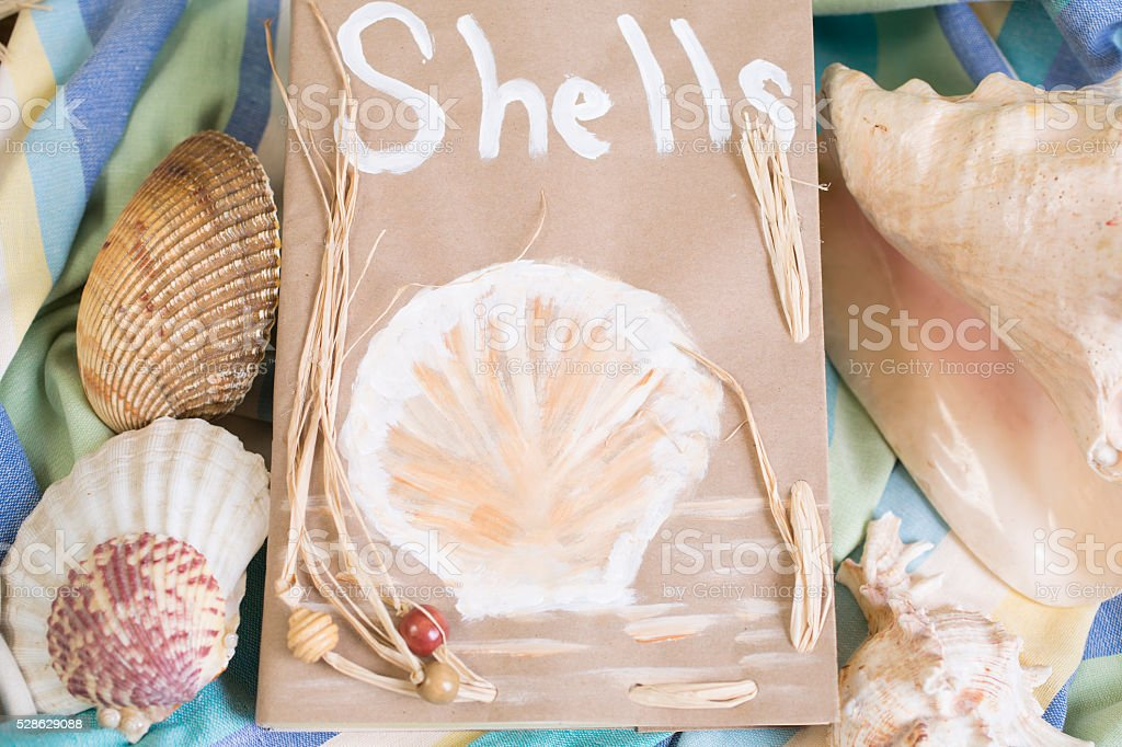 Summer vacation.  Paper bag filled with seashells on beach blanket. stock photo