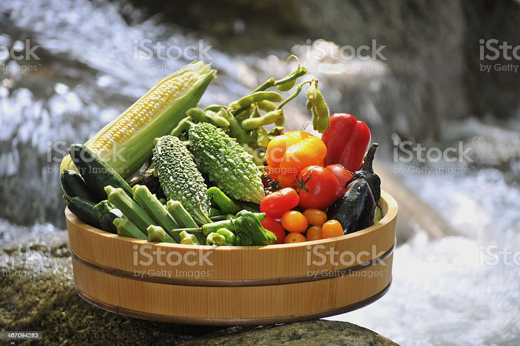 Summer vegetable stock photo