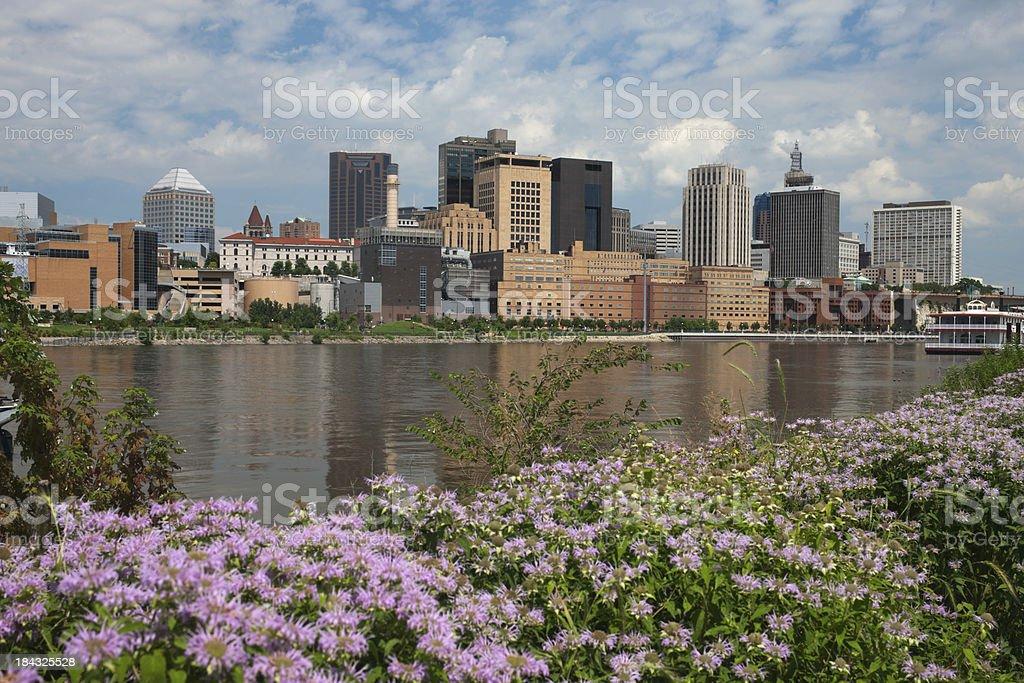 Summer view of St. Paul, Minnesota. stock photo