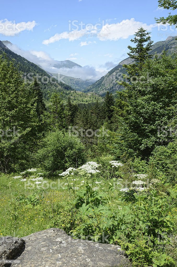 Summer view of the French Pyrenees royalty-free stock photo