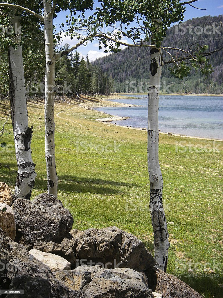 Summer View through Aspen toward Navajo Lake Beach Utah stock photo