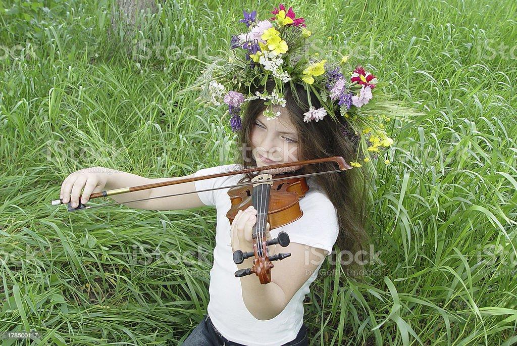 Summer viola royalty-free stock photo
