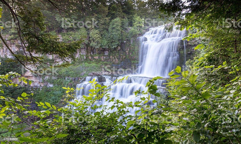 Summer waterfall peeking through green foliage stock photo