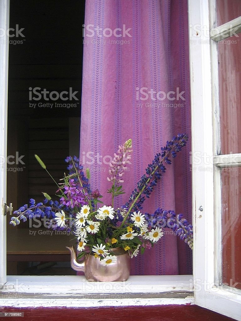 Summer window royalty-free stock photo